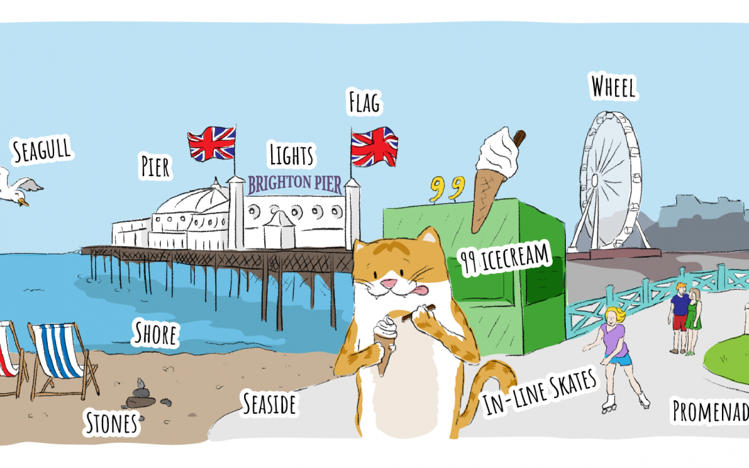 Brighton English Vocabulary
